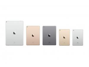 iPad Mini Range
